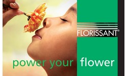 https://www.summerflowers.nl/en/wp-content/uploads/2018/10/summerflowers-sponsor-florissant.jpg