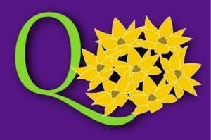 logo RCQ de Groot 2