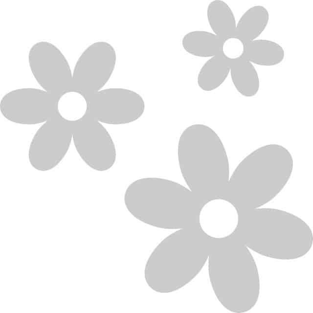 summerflowers-soorten-geen-foto