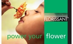 https://www.summerflowers.nl/wp-content/uploads/2018/10/summerflowers-sponsor-florissant.jpg